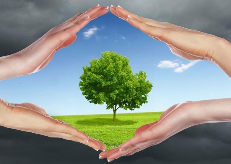 حفظ و صیانت از محیط زیست همیاری وزارت راه را می طلبد