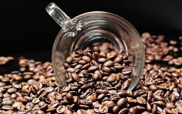 دانه قهوه ریسک ابتلاء به دیابت را کاهش می دهد