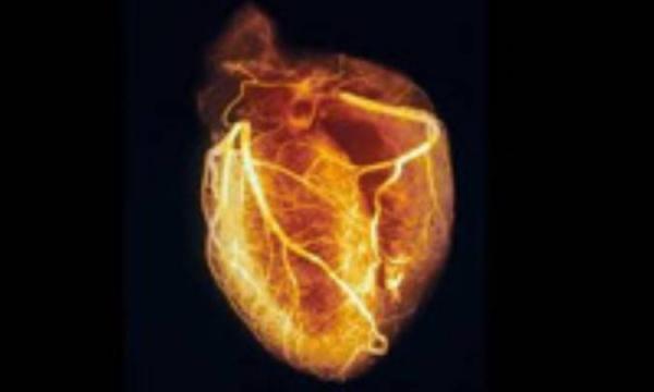 قلبی که بیمار متولد می شود